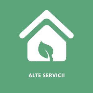 Alte servicii