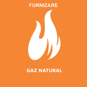 Furnizare Gaze naturale