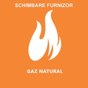 Schimbare Furnizor Gaze Naturale
